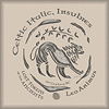 Celtic Coin Series - Celtic Lion Coin - Fine Art Print